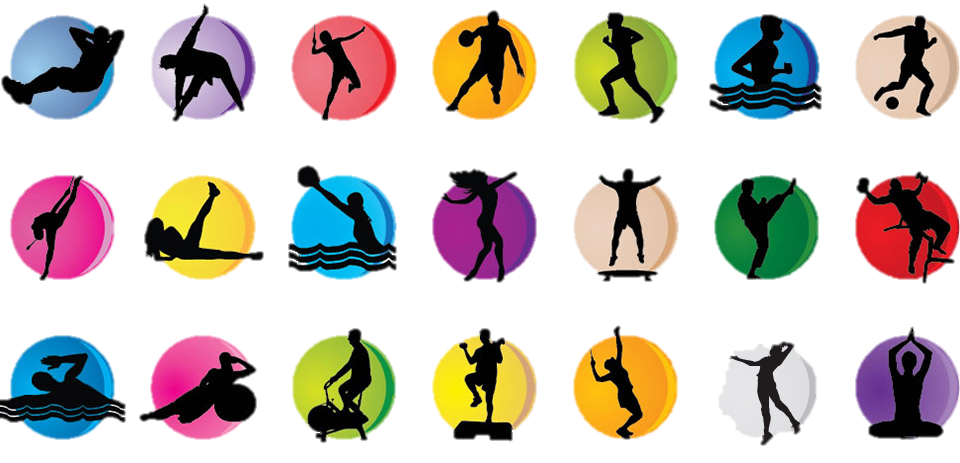 No dia 20 de julho a Comissão de Educação, Ciência, Juventude e Desporto procedeu à audição conjunta, a requerimento do PSD, das Federações Portuguesas de Andebol, de Basquetebol, de Futebol, de Patinagem e de Voleibol às 10h00.